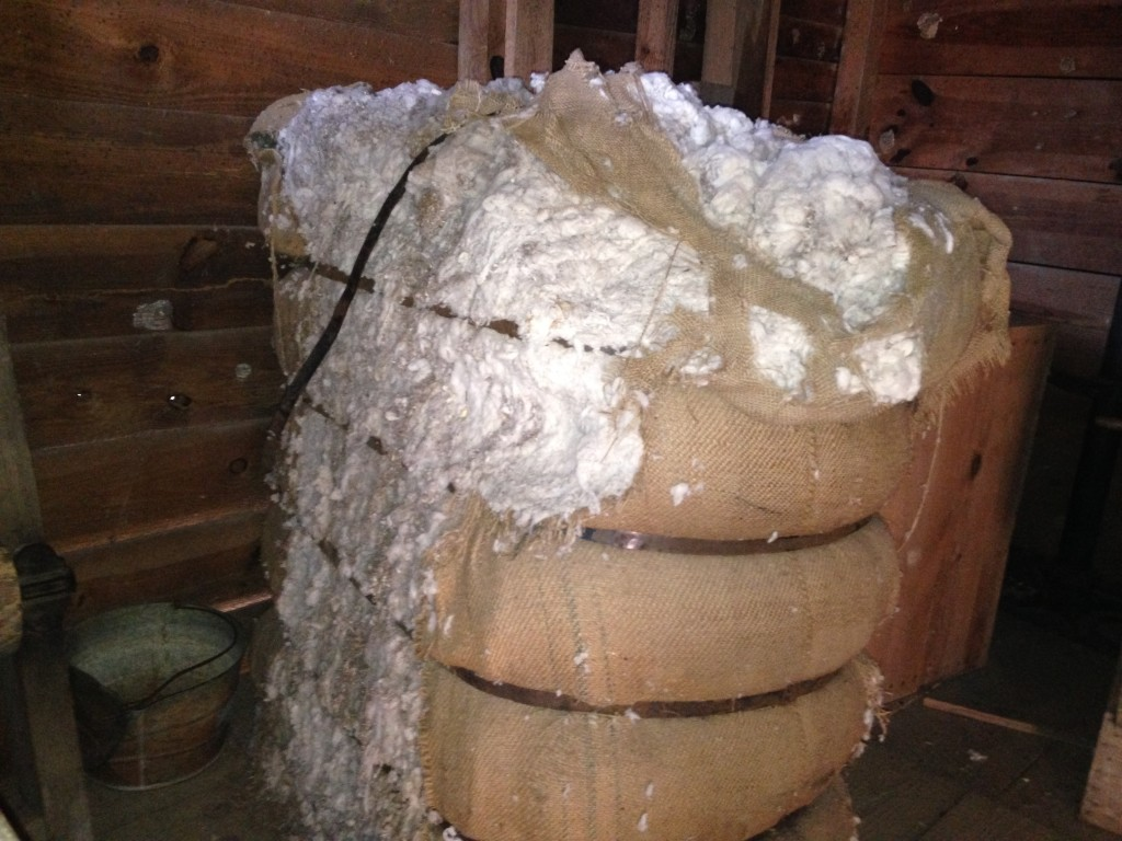 A cotton bale weighing over 500 pounds.