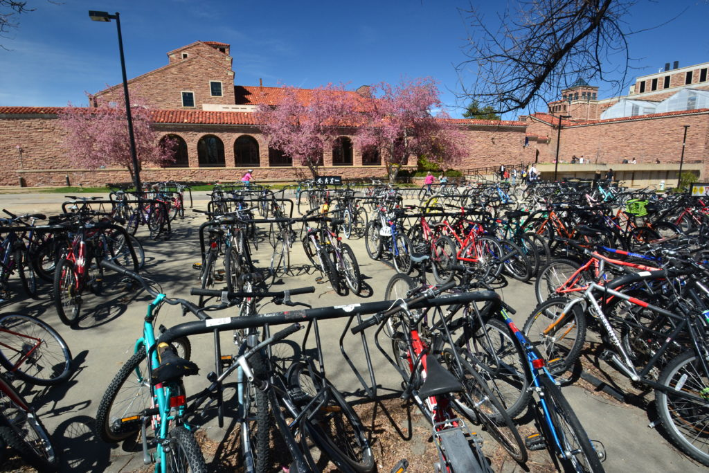 Bicycles in front of UMC