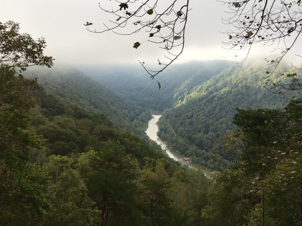 Looking into the New River Gorge